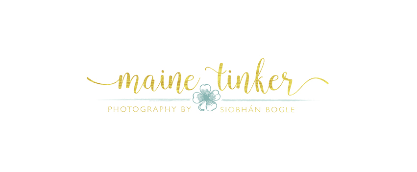 themainetinker.com logo
